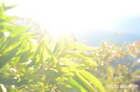 攝影入門 FotoBeginner - 簡單5招提升你的攝影功力! | KaoChris | Scoop.it