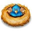 Buy Cheap Twitter Followers / Cheap Followerz™ | How to buy Twitter Followers Cheap | Scoop.it