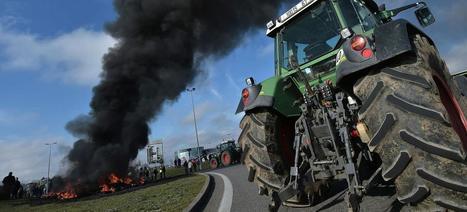 Les huit raisons du déclin de l'agriculture française | la presse AGRIcole | Scoop.it