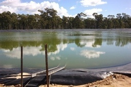 Pilliga coal seam gas project an environmental disaster | The Wilderness Society | Coal Seam Gas | Scoop.it