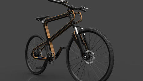 This  Bike Is Made From Wood And Recycled Soda Cans | Eco Reality | Scoop.it