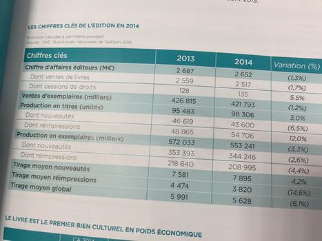 Le livre numérique représente 6,4 % du chiffre d'affaires de l'édition française | L'édition numérique pour les pros | Scoop.it