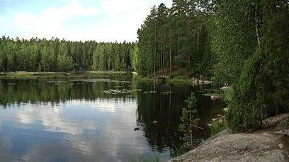 Kansallispuiston salat avautuvat partiolaisten opastuksella | Suomen partiolaiset | Scoop.it
