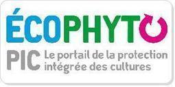 Nouvelle version du plan Ecophyto - Rapport du député Dominique POTIER 23/12/2014 | Agriculture- Environnement | Scoop.it