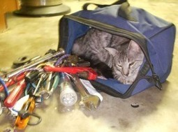 13 features of my dream CAT tool | Gabriela Janiszewska Translite | Terminology Services | Scoop.it