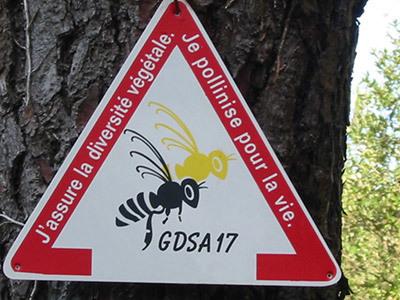 L'activité pollinisatrice des insectes dans le monde estimée à 153 milliards d'euros par an | Nouveaux paradigmes | Scoop.it
