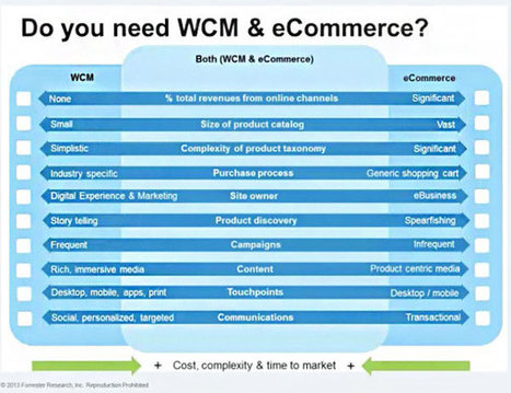 Ecommerce vs Web Content Management: Which Should Power Your Digital Experience? | MarketingHits | Scoop.it