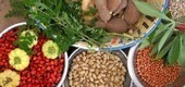 Rightful Recipients of a World Food Prize - Slow food | SlowNow | Scoop.it