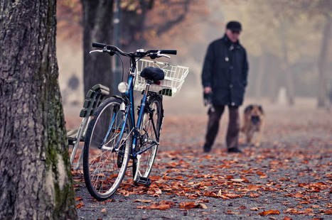 8 Tips For Cycling in Autumn | Rolling Horse Community Bikes | Scoop.it