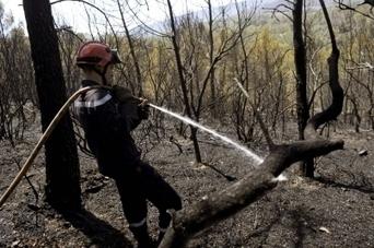 Treize sapeurs-pompiers bas-rhinois envoyés dans le Sud   Sapeurs-pompiers de France   Scoop.it