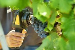 Les nouveaux capteurs changent le quotidien | Chimie verte et agroécologie | Scoop.it