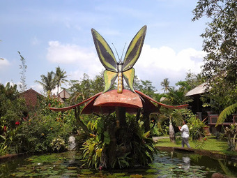 Travel And Culinary In Bali: Butterfly Garden in bali | travel and culinary bali | Scoop.it