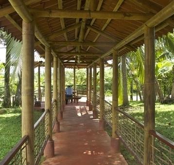 Bamboo industry helps Nicaragua grow green - Nicaragua Dispatch | sustainable rural development in Nicaragua | Scoop.it