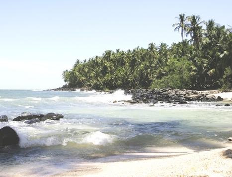 La Guyane grandeur nature   La Guyane   Scoop.it
