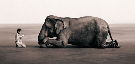 Magical Animal Photography by Gregory Colbert | Abduzeedo ... | photo and roll | Scoop.it