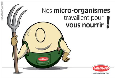 Ici des micro-organismes travaillent pour vous nourrir | Lallemand Plant Care | Chimie verte et agroécologie | Scoop.it