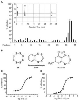 Inhibitor of the Tyrosine Phosphatase STEP Reverses Cognitive Deficits in a Mouse Model of Alzheimer's Disease | Neuroscience: Pharmacology & Drug Discovery | Scoop.it