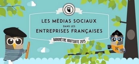 [Infographie] Les médias sociaux dans les entreprises françaises   Stratégie digitale et e-réputation   Scoop.it
