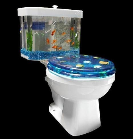Baños & Estilos: Fotos: Los inodoros más raros del mundo   Saneamiento   Scoop.it