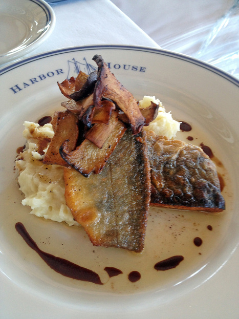That new catch on seafood menus? It's locally raised ivory char | Seafood | Scoop.it