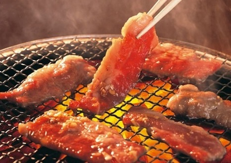 The Yakiniku Rules: dating advice from the front line | Health & Life Extension | Scoop.it