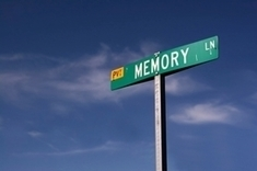 New Experiences Can Strengthen Old Memories | Social Neuroscience Advances | Scoop.it