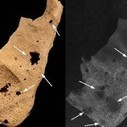 3,200-Year-Old Skeleton is Oldest Known Case of Human Cancer   Ancient Egypt and Nubia   Scoop.it