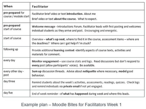 Richard's Blog | Tips for Online Facilitators | elearning_moodle_schools | Scoop.it