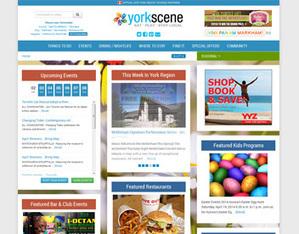 Responsive Web Designing, Website Designing services, Landing page design | Web Development & Designing | Scoop.it