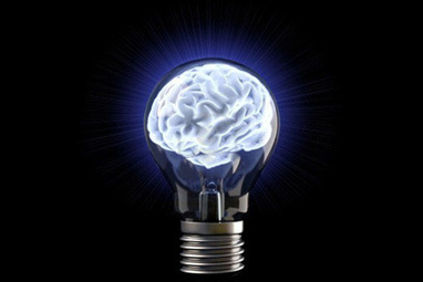 3 Valuable Insights Leaders Can Learn From Neuroscience | Leading Ideas | Scoop.it