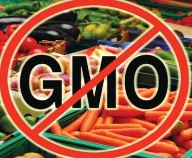 Azerbaijan seeks to remain GMO-free zone | GMO GM Articles Research Links | Scoop.it