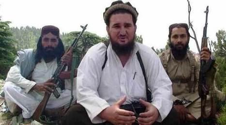 Pakistan Taliban sack spokesman Ehsanullah Ehsan - The News International   observaciones de medios de pakistan e india   Scoop.it