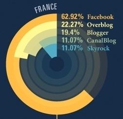 OverBlog : les chiffres de l'année 2011 | Toulouse networks | Scoop.it