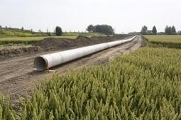 Autorisation environnementale : la généralisation dans les tuyaux | Environnement | Scoop.it