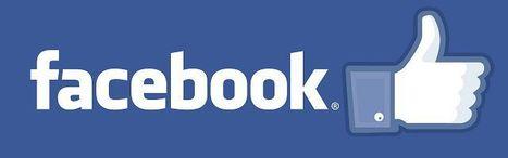 [Infographie] Facebook : les faits et les chiffres de l'année 2012 | Mnemosia: Graphics, Web, Social Media | Scoop.it
