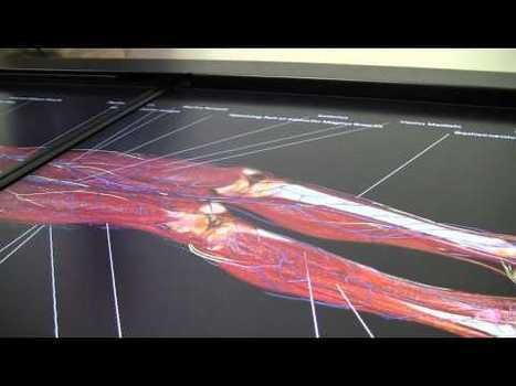 Teaching Anatomy in the 21st Century, 3d interactive virtual dissection table | ElectricTV.com | 21st Century Tools for Teaching-People and Learners | Scoop.it