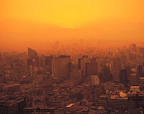 Crean edificios que limpian el smog   Edificios Inteligentes   Scoop.it