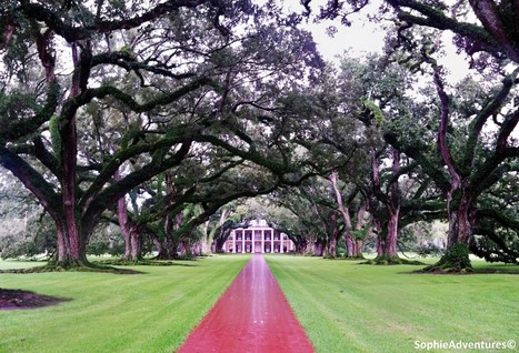 Oak Alley Plantation – La Vacherie, Louisiana – USA | Sophie ... | Oak Alley Plantation: Things to see! | Scoop.it