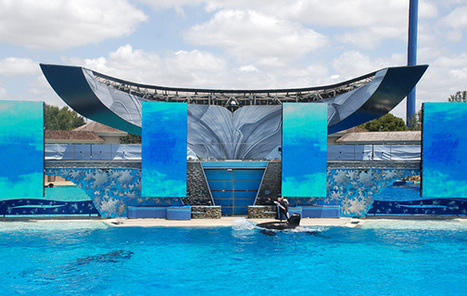 The USDA Cites SeaWorld for Putting Safety of Animals at Risk | Nature Animals humankind | Scoop.it