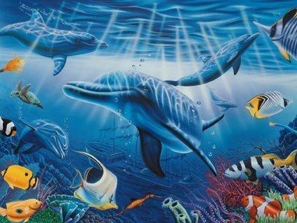 Datos Curiosos, Biología Marina - Biólogos y VIvos | Artículos Web | Biología marina y sus curiosidades | Scoop.it