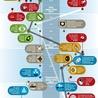 Infography-4u
