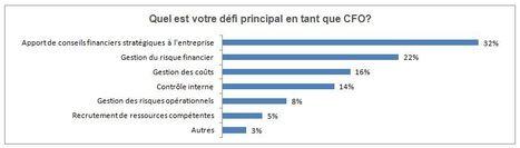 """RÉSULTATS DU SONDAGE """"MON CHER WATSON"""" AUPRÈS DES CFO (1 de2)   Modélisation financière   Scoop.it"""