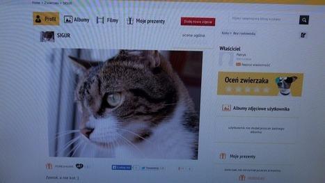 Zwierzęta też mają swoje portale społecznościowe | Nowinki i gadżety technologiczne | Scoop.it