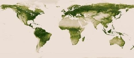 Nuevo mapa interactivo de la vegetación del planeta - Noticias educ.ar | Web 2.0 y sus aplicaciones. | Scoop.it