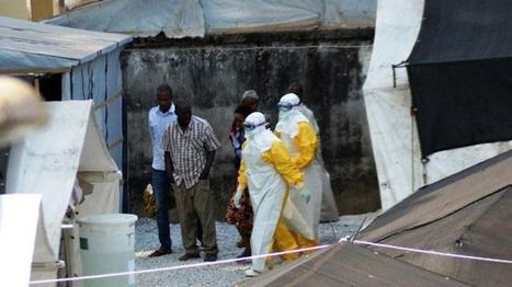 #Ebola death rising in West #Africa: #WHO | Messenger for mother Earth | Scoop.it