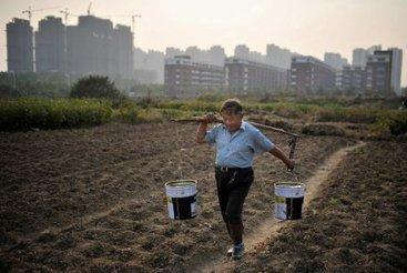 Une nouvelle ère agraire | Sylvain Charlebois | Votre opinion | Chine contemporaine • 內 | Scoop.it