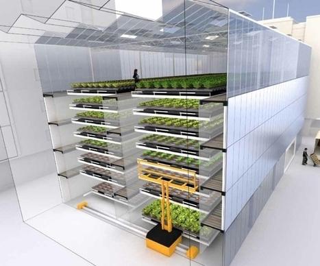Un immeuble dédié aux seuls légumes: une ferme maraîchère urbaine en plein Lyon en 2016 | Urbanisme | Scoop.it