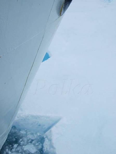 Arctic.io : photo satellite quotidienne de l'Arctique  © Paul Kerrien - http://toilapol.net | Hurtigruten Arctique Antarctique | Scoop.it