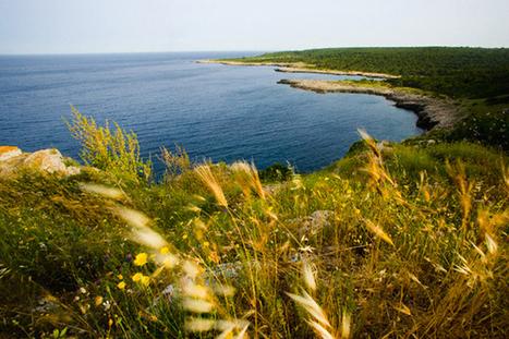 La Puglia nella  top list  delle mete consigliate da NatGeo Traveler | Marketing_me | Scoop.it