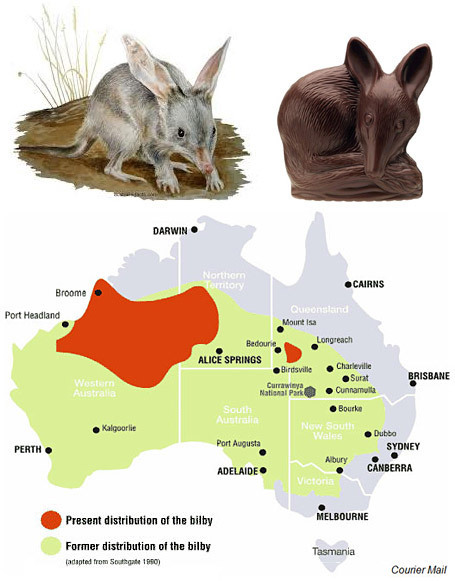The Bilby-Safe Fence | Australian Culture | Scoop.it